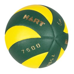 HART Swirl 7500 Volleyball
