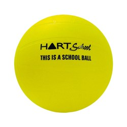 HART School PVC Volleyball