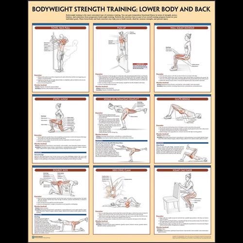 Bodyweight Strength Training Poster Set